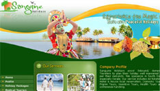 high quality web designing companies in kerala